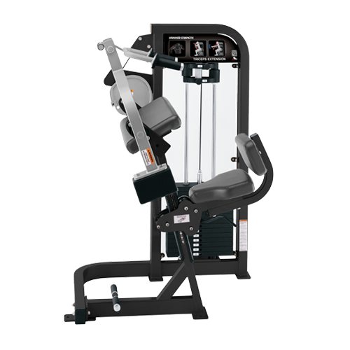 DF-703-Triceps Extension.png