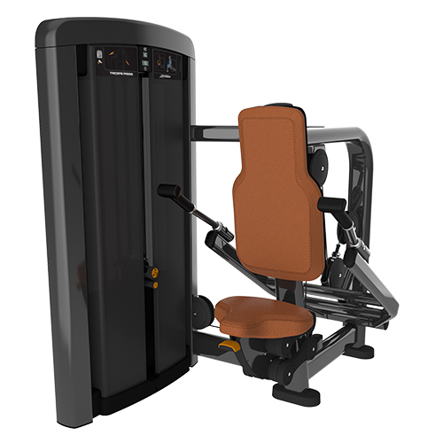 DF-9003-Triceps Press.jpg