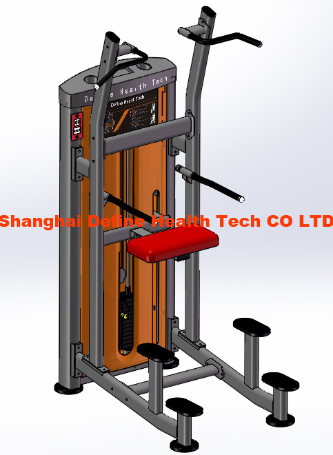 DF-8014-Weight Assisted Chin + Dip.JPG